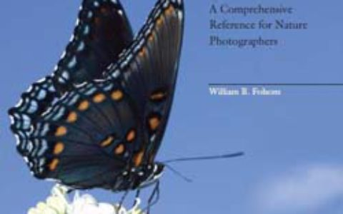 butterfly_photographers_handbook