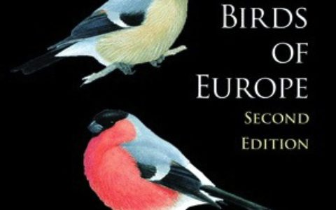 birds_of_europe_feature