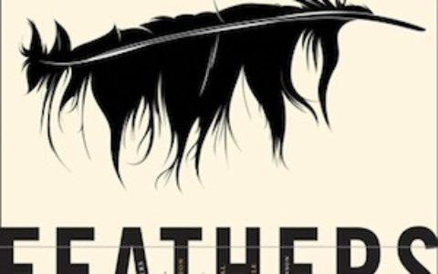 feathers_feature
