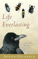 life_everlasting_cover