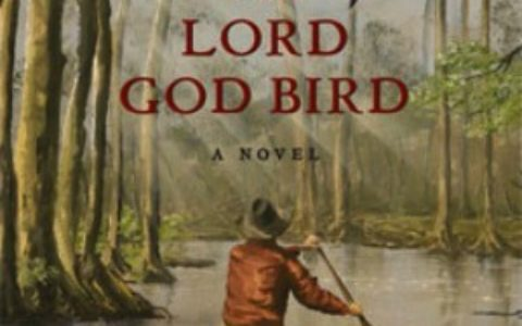 The_Lord_God_Bird_feature