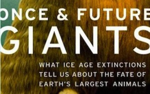 once_future_giants_feature