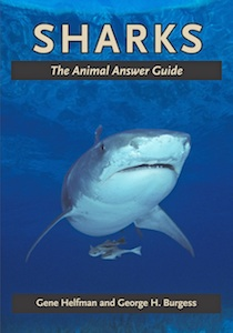 Sharks Animal Answer Guide