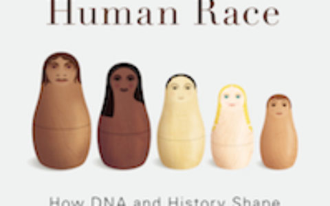 Invisible History Human Race cover