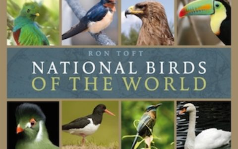 National Birds of the World cover 400h