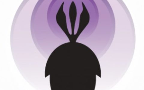 Palaeocast Icon