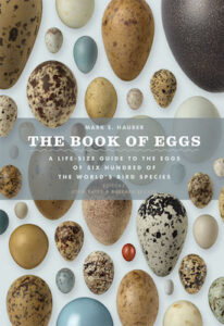 Book of Eggs cover