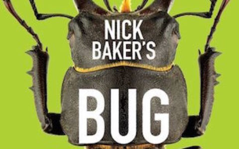 Bug Book cover