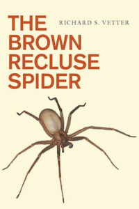 Brown Recluse cover