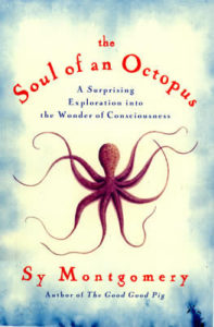 Soul Octopus cover