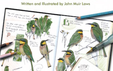 Laws Guide Nature Drawing
