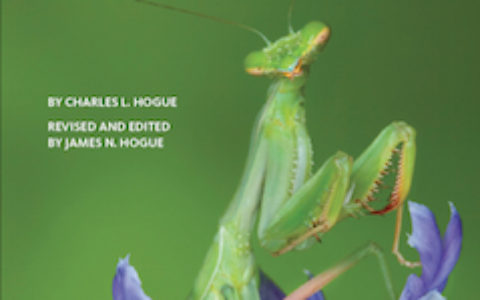 Insects Book-Cover