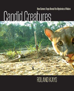 Candid Creatures cover