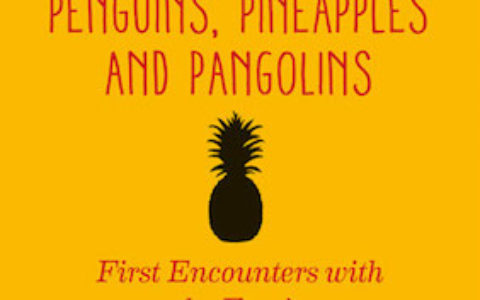 Penguins Pineapples Pangolins cover