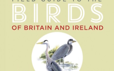 FG Birds Britain Ireland