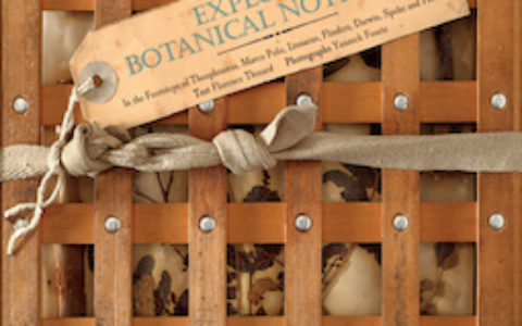 explorers-botanical-notebook-cover