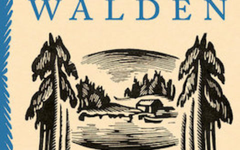 illustrated-walden-cover