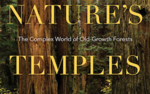 natures-temples-cover