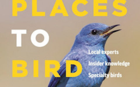 Best Places Bird BC cover