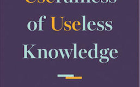Usefulness Useless cover