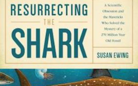 Resurrecting Shark cover