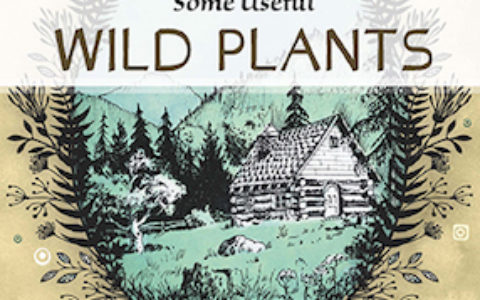 Some Useful Wild Plants cover