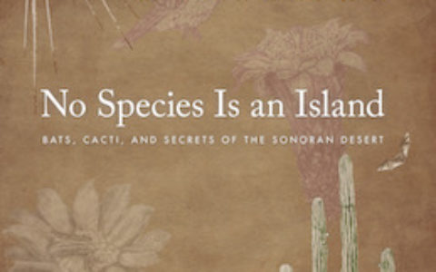 No Species Island cover