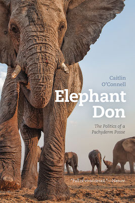 Elephant Don cover