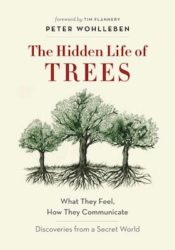 Hidden Life of Trees cover