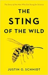 Sting Wild cover