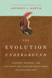 Evolution Underground cover