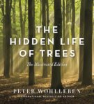 IllustratedTrees_cover_FINAL.indd